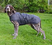 Björkis Hundförartäcke   XS