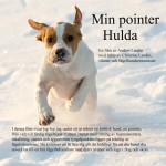 Min Pointer Hulda